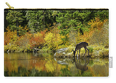 Tuti Fruti Colors And Eye Candy Reflections Carry-all Pouch by Diane Schuster