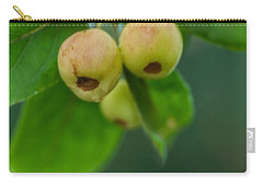 Carry-all Pouch featuring the photograph Twin Berries by Jacqui Boonstra