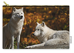 Carry-all Pouch featuring the photograph Two Arctic Wolves On Rock Hill by Wolves Only