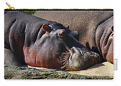 Two Hippos Sleeping On Riverbank Carry-all Pouch by Johan Swanepoel