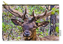Carry-all Pouch featuring the photograph Up Close And Personal With An Elk by Bob and Nadine Johnston