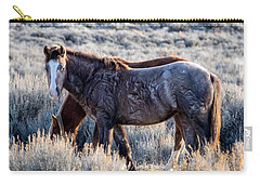 Velvet - Young Colt In Sand Wash Basin Carry-all Pouch by Nadja Rider