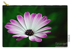 Violet And White Flower Petals With Yellow Stamens Blossoms  Carry-all Pouch