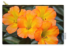 Vireya Rhododendron Carry-all Pouch by Venetia Featherstone-Witty