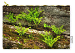 Carry-all Pouch featuring the photograph Ferns by Alana Ranney