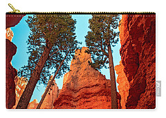 Wall Street Carry-all Pouch by Robert Bales