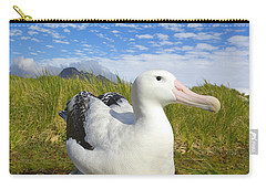 Wandering Albatross Incubating  Carry-all Pouch
