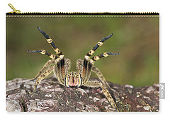 Wandering Spider In Defensive Posture Carry-all Pouch by Konrad Wothe