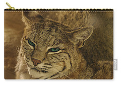 Wary Bobcat Carry-all Pouch