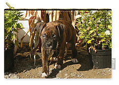 Carry-all Pouch featuring the photograph Was I Bad? by Carol Lynn Coronios