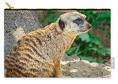 Meerkat Carry-All Pouches