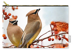 Beautiful Waxwing  Carry-all Pouch