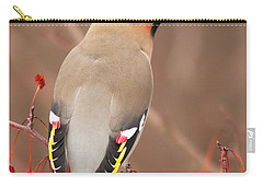 Waxwing In Winter Carry-all Pouch by Mircea Costina Photography