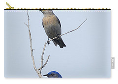 Western Bluebird Pair Carry-all Pouch by Mike  Dawson