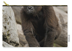 Western Lowland Gorilla Baby Carry-all Pouch by San Diego Zoo