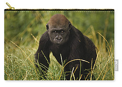 Western Lowland Gorilla Juvenile Carry-all Pouch by Gerry Ellis