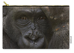 Western Lowland Gorilla With Hand Carry-all Pouch by San Diego Zoo