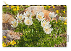 Carry-all Pouch featuring the photograph Western Pasqueflower And Buttercups Blooming In A Meadow by Jeff Goulden