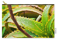 After The Rain Carry-all Pouch by Melinda Ledsome