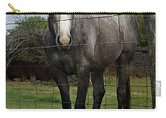 Carry-all Pouch featuring the photograph What Are You Afraid Of by Peter Piatt