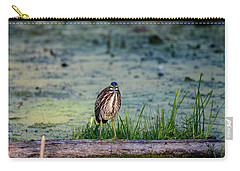 Carry-all Pouch featuring the photograph Whatcou Lookin' At? by David Porteus