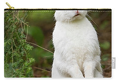 What's Up Doc Carry-all Pouch by Bill Wakeley
