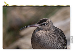 Carry-all Pouch featuring the photograph Whimbrel by Bianca Nadeau