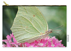Carry-all Pouch featuring the photograph White Angled Sulphur by Judy Whitton