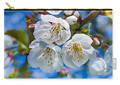 White Cherry Blossoms Blooming In The Springtime Carry-all Pouch