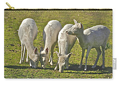 White Fallow Deer Mt Madonna County Park Carry-all Pouch