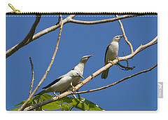 White-headed Starlings Havelock Isl Carry-all Pouch by Konrad Wothe