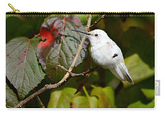 White Hummingbird Carry-all Pouch
