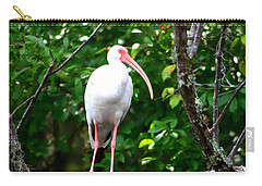 Carry-all Pouch featuring the photograph White Ibis by Debra Forand