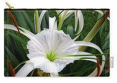 Hurricane Lily Photographs Carry-All Pouches