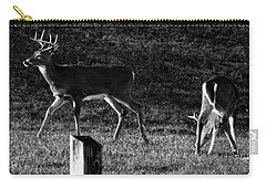White Tailed Deer Carry-all Pouch by Chris Flees