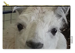 Carry-all Pouch featuring the photograph Who Me Llama by Caryl J Bohn