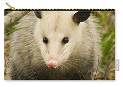 Who Says Possums Are Ugly Carry-all Pouch by Kathy Clark