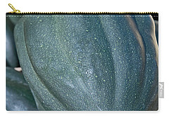 Whole Acorn Squash Art Prints Carry-all Pouch