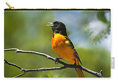 Wild Birds - Baltimore Oriole Carry-all Pouch by Christina Rollo