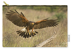 Wild Harris Hawk Landing Carry-all Pouch