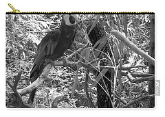 Carry-all Pouch featuring the photograph Wild Hawaiian Parrot Black And White by Joseph Baril