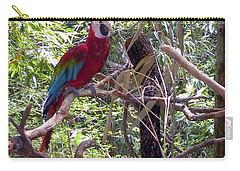 Carry-all Pouch featuring the photograph Wild Hawaiian Parrot  by Joseph Baril