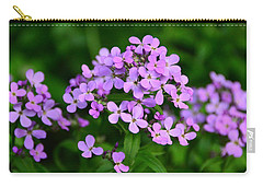 Carry-all Pouch featuring the photograph Wild Phlox by Debra Martz