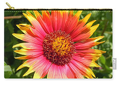 Carry-all Pouch featuring the photograph Wild Red Daisy #3 by Robert ONeil