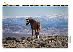 Wild Stallion Of Sand Wash Basin Carry-all Pouch by Nadja Rider