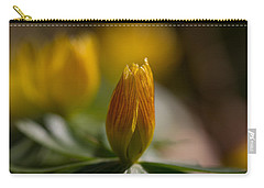 Winter Aconite Carry-all Pouch