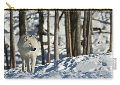 Carry-all Pouch featuring the photograph Winter Arctic Wolf by Wolves Only
