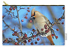Winter Colors.. Carry-all Pouch