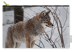 Winter Coyote Carry-all Pouch