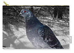 Carry-all Pouch featuring the photograph Winter Pigeon by Nina Silver